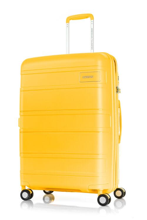 LITEVLO SPINNER 69/25 EXP TSA  hi-res   American Tourister